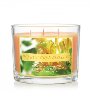 Honeysuckle Blossom Candle - The flowers are booming -- Honeysuckles that is! This candle gives off alluring smells of honeysuckle highlighted by sheer florals with a creamy vanilla background to fill your home with beautiful, spring smells.