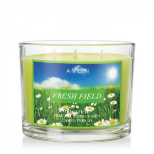 Fresh Field Candle - Spring is in the air! This candle gives off alluring smells of greens and florals to fill your home with beautiful, spring smells.