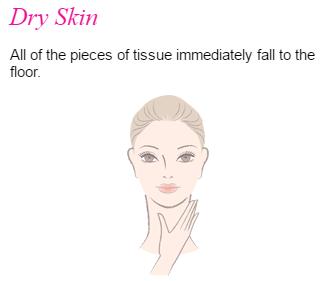 Skin Advisor Dry Skin